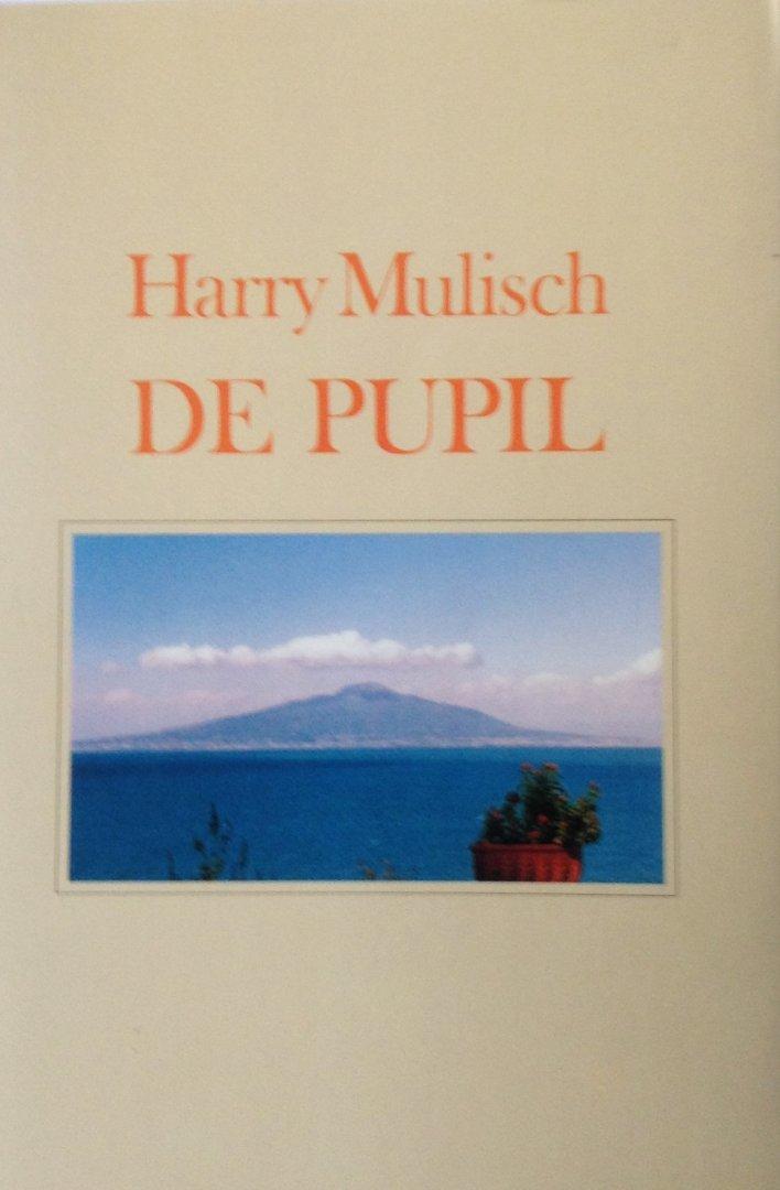 Mulisch, Harry - De pupil