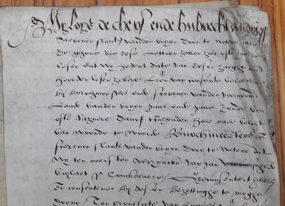 Schepenen van Brugge, - Burgemeesteren en schepenen slants vanden vryen (Brugge)