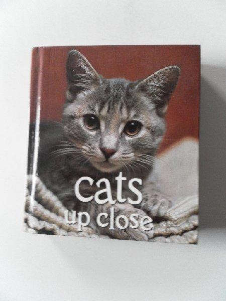 Croke, Vicki - Cats up close (fotoboek)