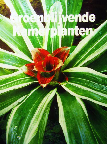 Groenblijvende kamerplanten