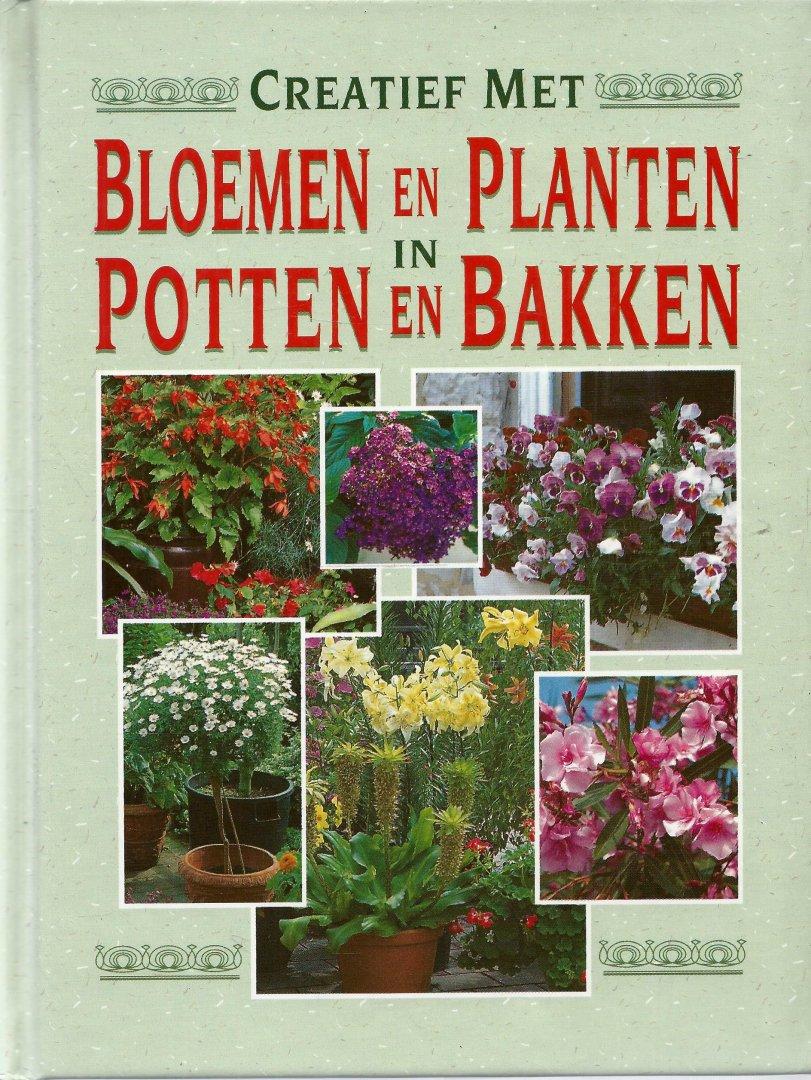 Höger-Orthner, Ilse - CREATIEF MET BLOEMEN EN PLANTEN IN POTTEN EN BAKKEN