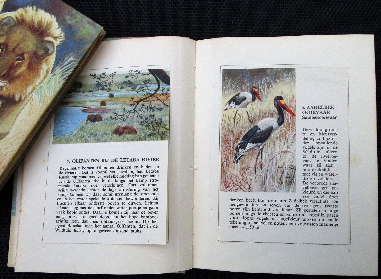 Strijbos, Jan P. - DE KRUGER WILDTUIN - Plaatjeszakboekjes deel 1 + deel 2. Compleet