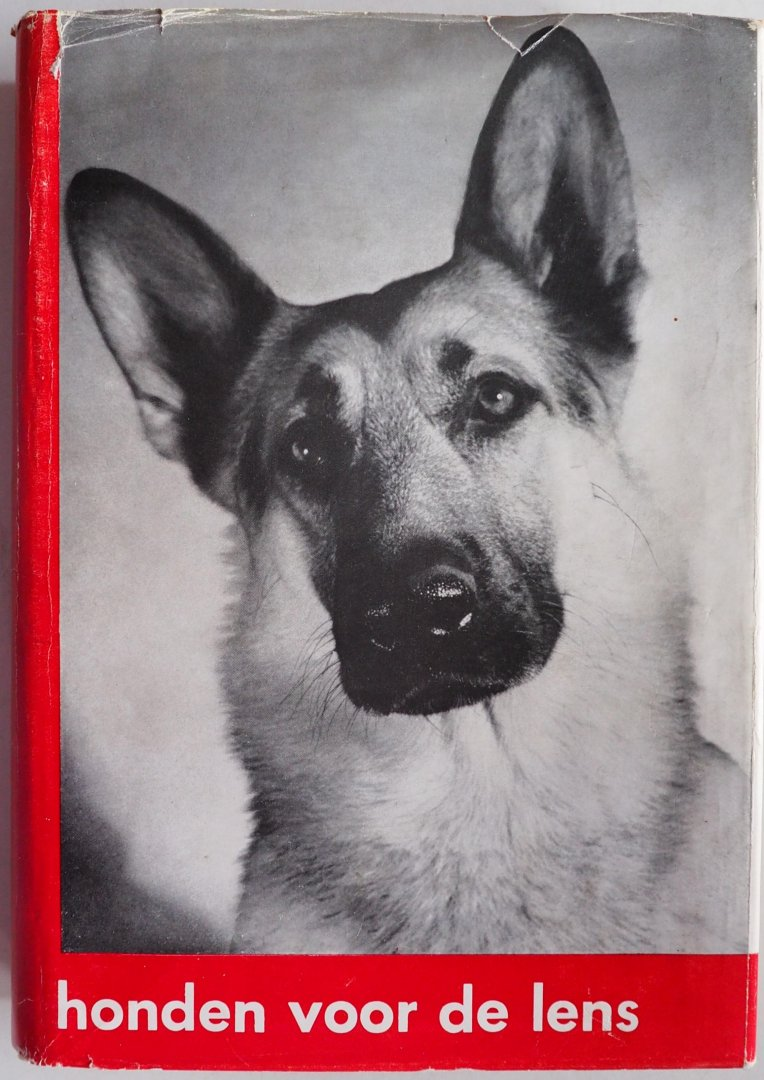 Ruperti Marga, vertaald door Nel Bakker, ill. Knaur Kathe - Honden voor de lens