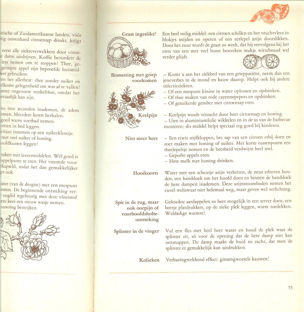 Tekeningen Kerrin van Carnap Berkhout-Meyer, Edda Nederlandse bewerking  Pamela de Kat .. Tekeningen Kerrin van Carnap