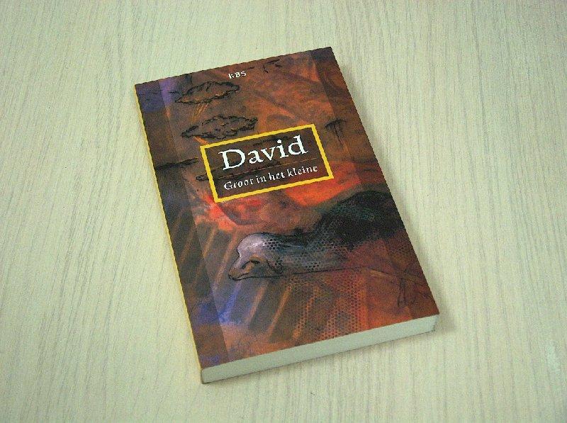 David - David - Groot in het kleine.