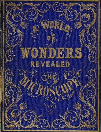 Mary Ward - A world of wonders revealed by the microscope