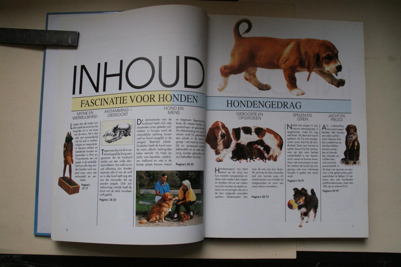 Hegewald-Kawich, Horst; Wegler, Monika - alles wat u moet weten over het gedrag van honden  UW HOND  met 320 afbeeldingen in kleur