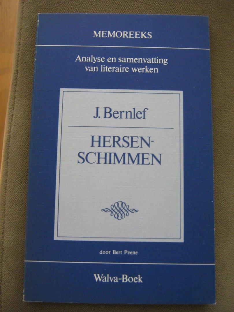 Boekwinkeltjesnl Peene Bert J Bernlef Hersenschimmen