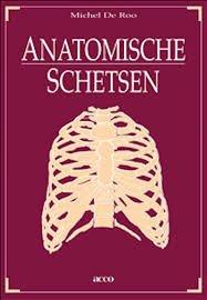Roo - Anatomische schetsen
