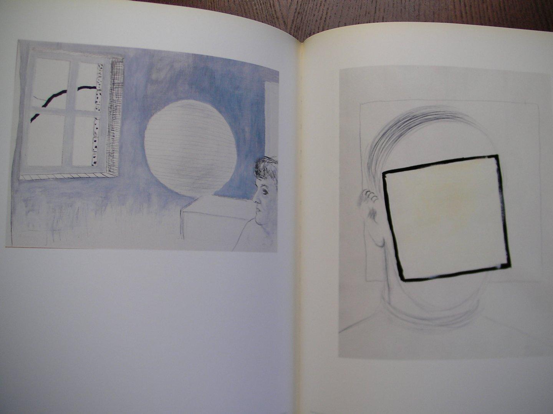 Hilde Pauwels - Roger Raveel monografiën over moderne kunst
