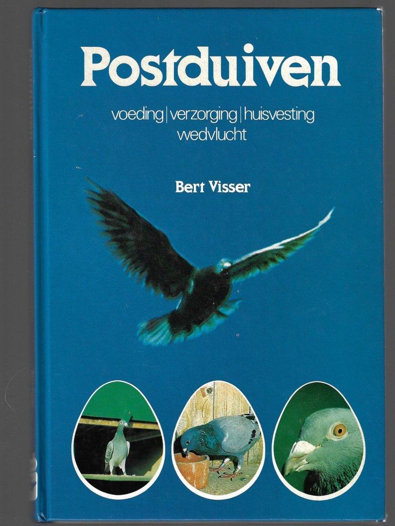 VISSER, BERT - Postduiven -Voeding/verzorging/huisvesting/wedvlucht
