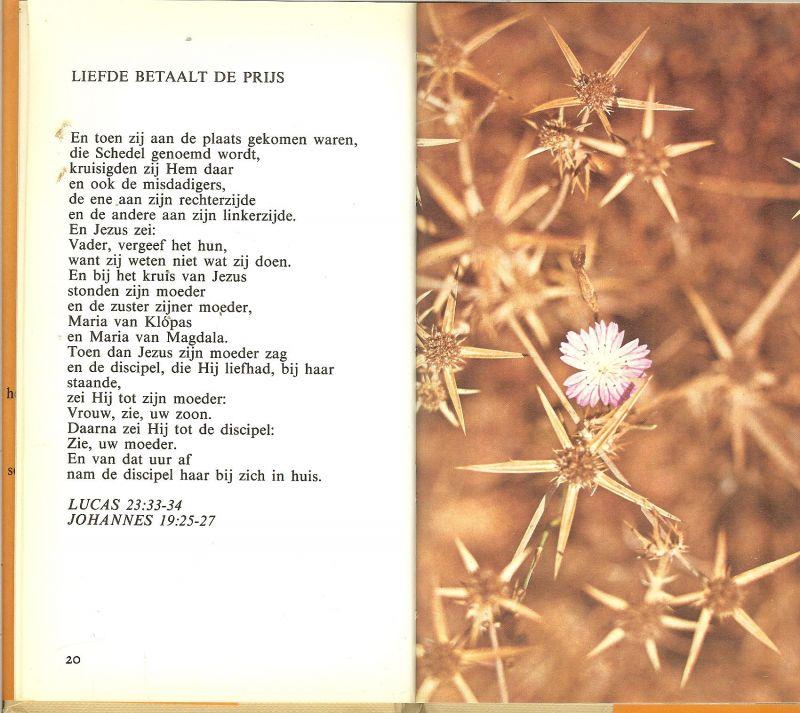 Genoeg Boekwinkeltjes.nl - Een woord van liefde .. Teksten uit de Bijbel  @ZV03