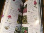 Papiomitoglou, V - Fleurs sauvages de Crète (Wilde bloemen van Kreta)