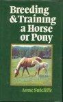 Sutcliffe, Anne - Breeding & Training a Horse or Pony (Engelstalig)