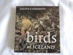 Bardarson Hjalmar R. - Birds of Iceland