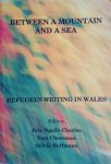 Eric Ngalle Charles, Tom Cheesman, Sylvie Hoffmann - Between a mountain and a see - Refugees writing in Wales