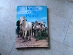 Pamela Macgregor Morris - Horses of the World