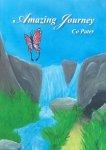 Pater, Co - Amazing journey; een spiritueel filosofische verkenning