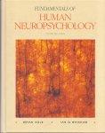 Kolb, Bryan & Whishaw, Ian Q. (ds1215) - Fundamentals of Human Neuropsychology