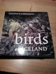 Bardarson, H R - Birds of Iceland