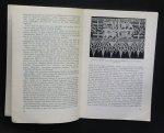 redactie - Van oude naar moderne kant   Internationale Tentoonstelling Brugge julie 1955
