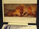 Allen D. e.a. (fotografen) - Younf wild life of South Africa