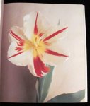 Lemmers, Willem photographer Baker, Christopher - Tulipa A Photographer's Botanical