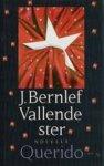 Bernlef, J. - Vallende ster