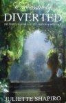 Shapiro, Juliette - Excessively Diverted: The Sequel to Jane Austen's Pride and Prejudice