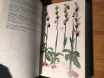 Williams, Arlott - Orchids of Britain and Europe, with North Africa and the Middle East, a Field Guide to the
