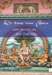 Vink, Erika - De dans van Shiva  -  méér dan een reis ... door Zuid-India