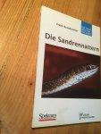 Brandstätter, Frank - Die Sandrennattern - Gattung Psammophis  (Zandadders)