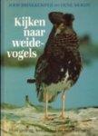 Brinkkemper, Joop / Moedt, Oene - Kijken naar weidevogels