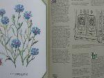 - De Herbis Salutaribus (Plantenverhalen, planzengeschichten, stories of plants, histoires des plantes,