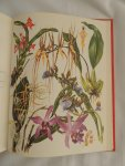 Barbara Everard - Brian D Morley; B. Everard - WILD FLOWERS of the World