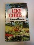Murray, Andrew - Like Christ
