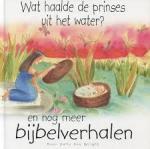 Wright, Sally Ann - Wat haalde de prinses uit het water, en nog meer bijbelverhalen