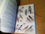 Heather, Barrie & Hugh Robertson & Derek Onley - Field Guide to the Birds of New Zealand