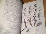 Onley, Derek & Paul Scofield - Albatrosses, Petrels and Shearwaters of the World