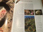 Pauw, Anton & Steven Johnson - Table Mountain - A Natural History