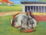 Eshuis, Dick - Dieren-kameraadjes (konijn, kip, zwaan, schaap)