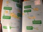Sayers & Stewart - Azores (Bradt Guide) (De Azoren)