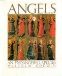 Godwin, Malcolm - Angels (An endangered species). Engelen.