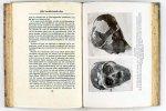 Carter, Howard en Mace, A.C. - Het graf van Tut-Anch-Amon Ontdekt door wijlen Graaf Carnarvon en Howard Carter. Deel 2 (6 foto's)