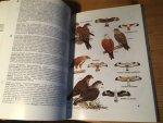 Viney, Clive & Karen Phillips - Birds of Hong Kong and South China