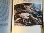 Buchanan, Meg (ed) - St Kilda - the continuing story of the islands