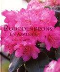 Cox, Kenneth - Rododendrons en azalea's