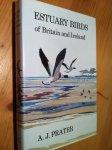 Prater, AJ - Estuary Birds of Britain and Ireland