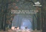 Auteurs (diverse) - Gemeente Epe, het groene hart tussen de weilanden in het Veluwe-massief
