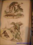 CUVIER. - Histoire Naturelle de Lacepede: Comprenant Les Cetacees, Les Quadrupedes Ovipares, Les Serpents Et Les Poissons ( 2 volumes)